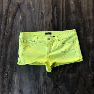 bebe Shorts